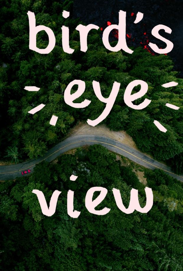 birdseyeview_poster