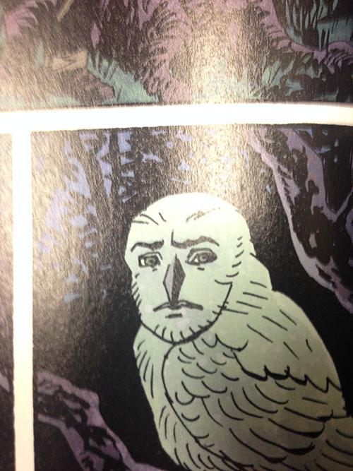manfacebird