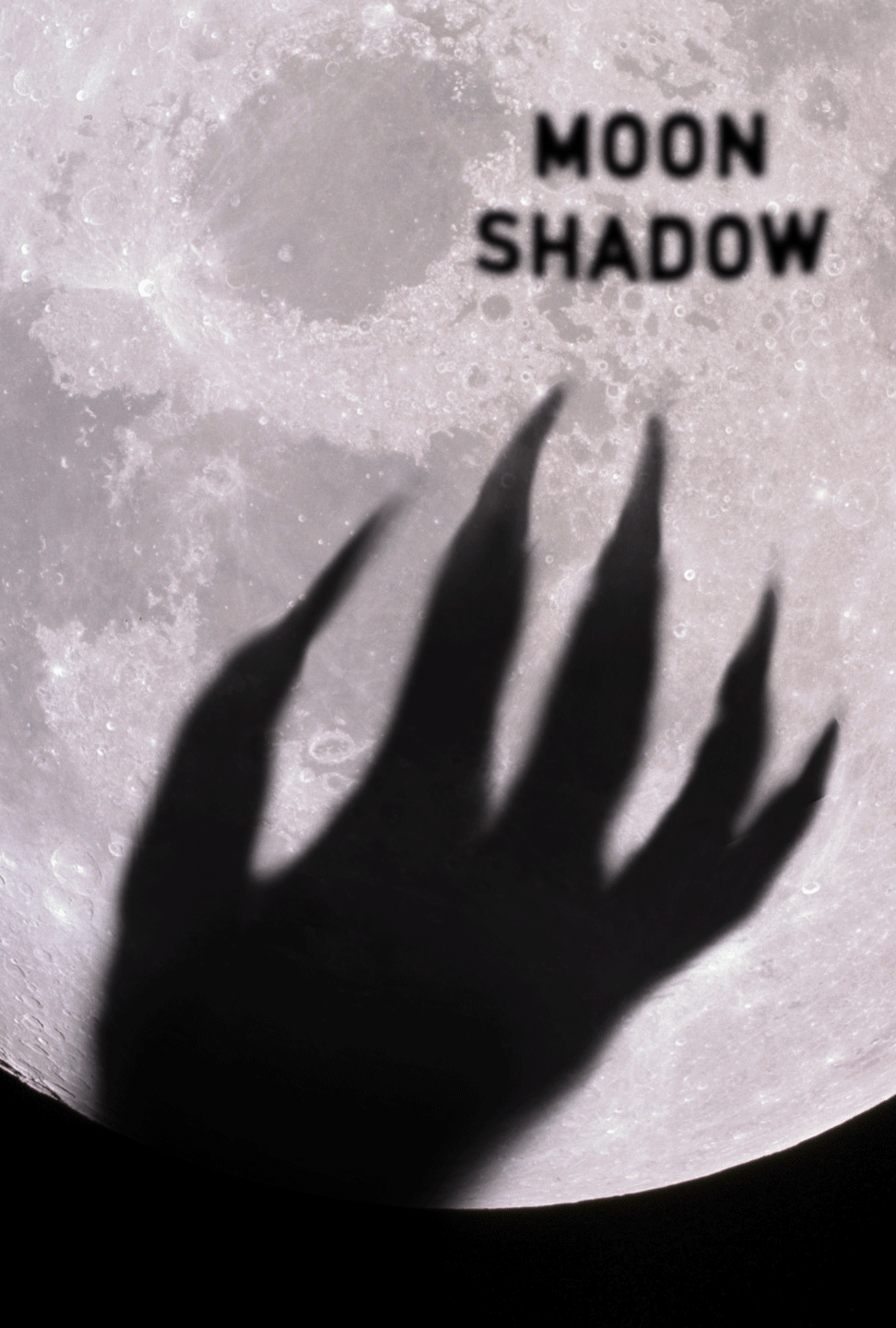 moonshadow_poster.png